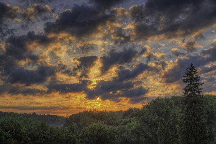 Hickory Sunrise