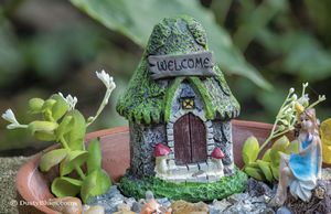 Garden Whimsy print