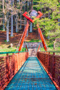 Cedar Falls Foot Bridge print