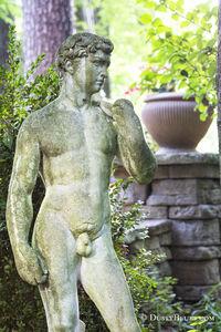 David Statue print