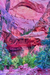 Double Arch Zion Back Country print