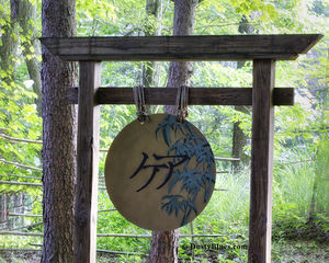 Gong print