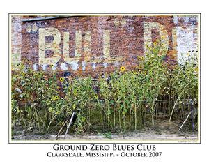 Ground Zero Sunflowers print
