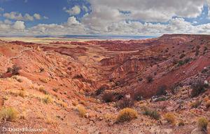 Hopi Mesa print