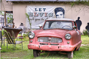 Hopson Elvis and Car print