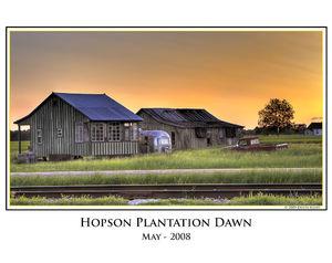 Hopson Plantation print