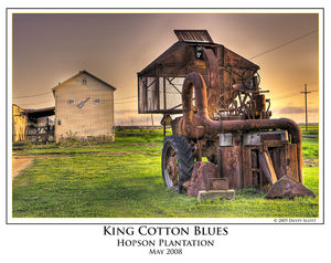 King Cotton Blues print