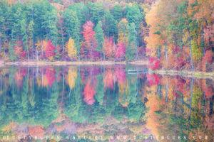 Fall Hope print