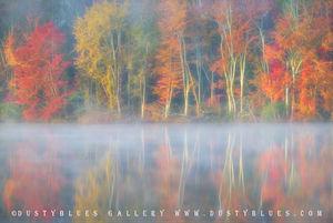 Fall Impression print