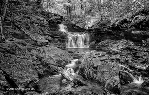 Ricketts Glen Falls II print