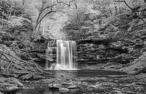 Ricketts Glen Falls III print