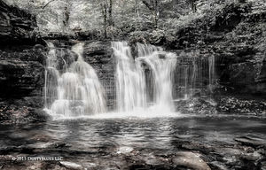 Ricketts Glen Falls I print