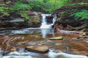 Ricketts Glen Water fall print