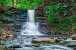 Ricketts Glen Water fall print
