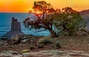 Canyonlands Sunset print