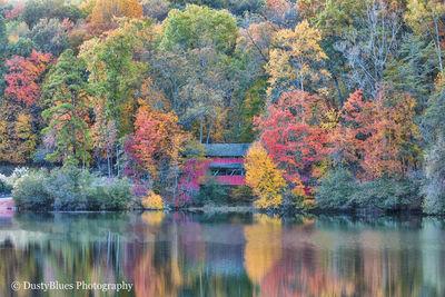 Hocking Hills Fine Art, Hocking Hills Photography, DustyBlues Photography, DustyBlues LLC, Old Mans Cave, Logan, Ohio, Hocking...