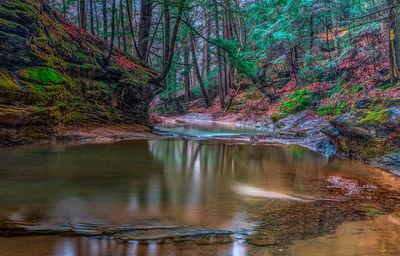 Boch Creek