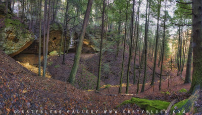 Art gallery in hocking hills, crystal falls hocking hills, hocking hills photo prints, logan ohio gallery, Hocking Hills Photography, Contemplative Photography, Double Vision, Ferrous Hollow Double Fa