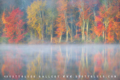 Art gallery in hocking hills, crystal falls hocking hills, hocking hills photo prints, logan ohio gallery, Hocking Hills Photography, Lake Logan, Lake Logan Fall, Lake Logan Reflection