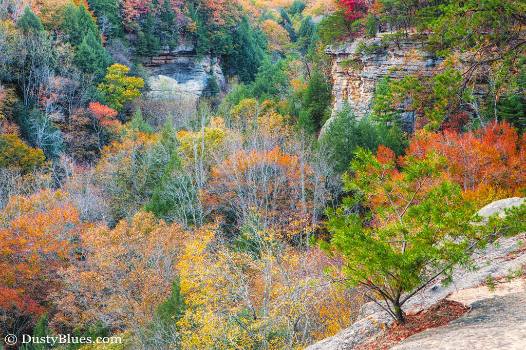 A view from the rim trail on Conkle's Hollow. Val captured the hues ofthe season looking into the hollow while on the far cliff...