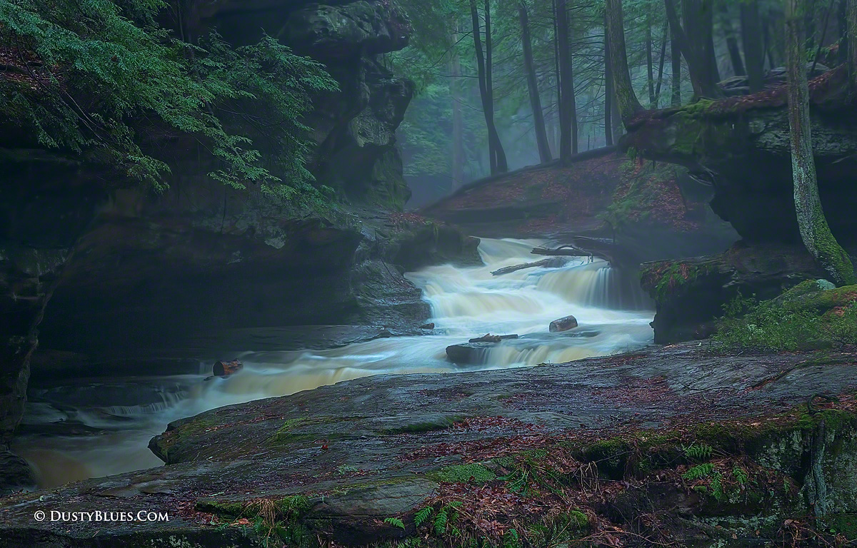 Old Man S Cave Forest Stream Hocking Hills Hocking