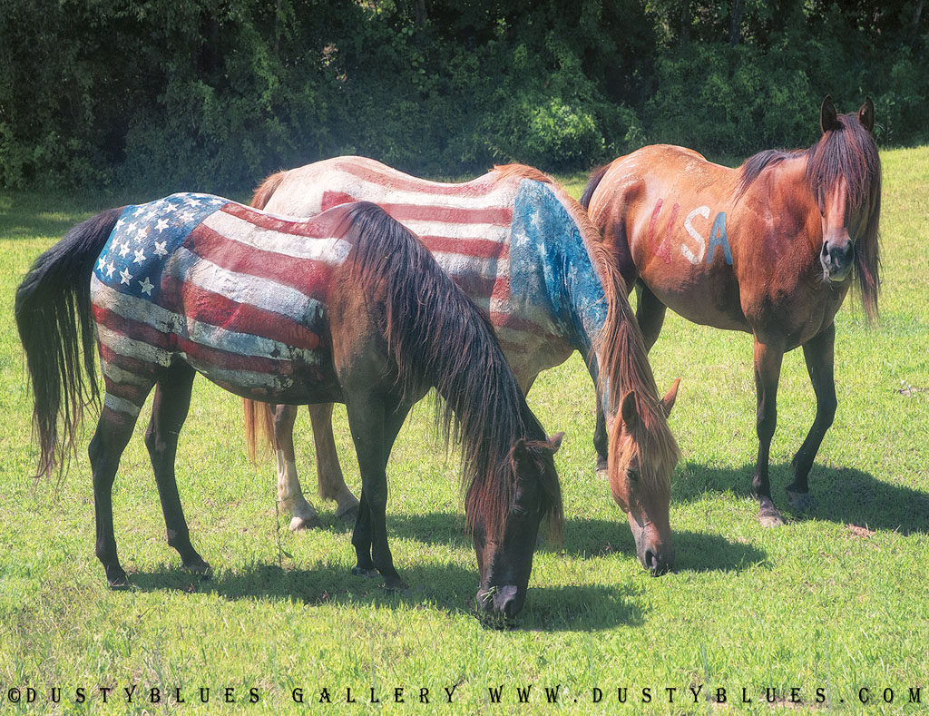 Patriotic Horses painted with American Flags