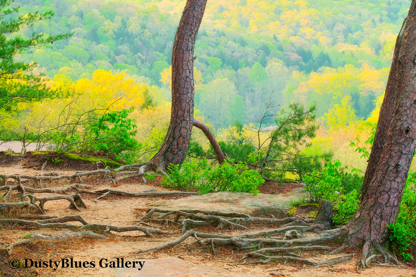 hocking hills photography, hocking hills ohio legends, dustyblues art gallery, hocking hills, photographer, dustyblues, dusty blues, dusty blues art gallery, photo