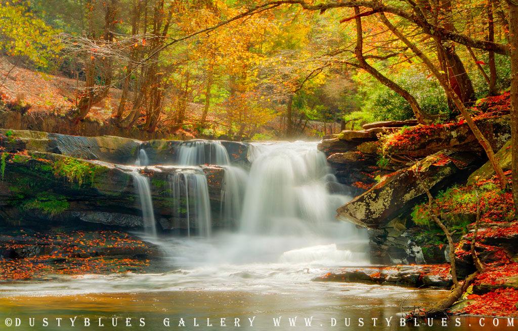 Rockine Creek