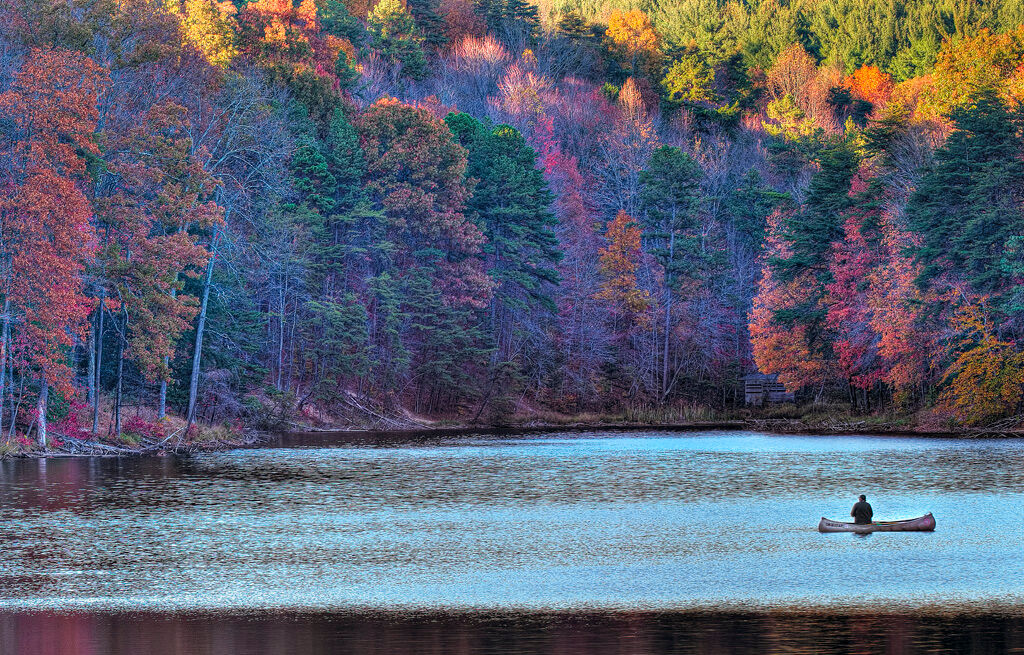 Angler's Paradise: This Fall late afternoon at Rose Lake was an exhilarating hike. The lone angler had portaged his canoe to...