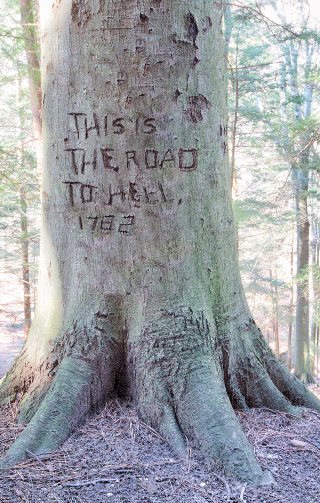 An ancient Beech tree carving from an early trapper in Hocking Hills
